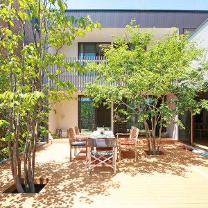 ミカンの木の育つ二世帯住宅 [部分共有の二世帯住宅]