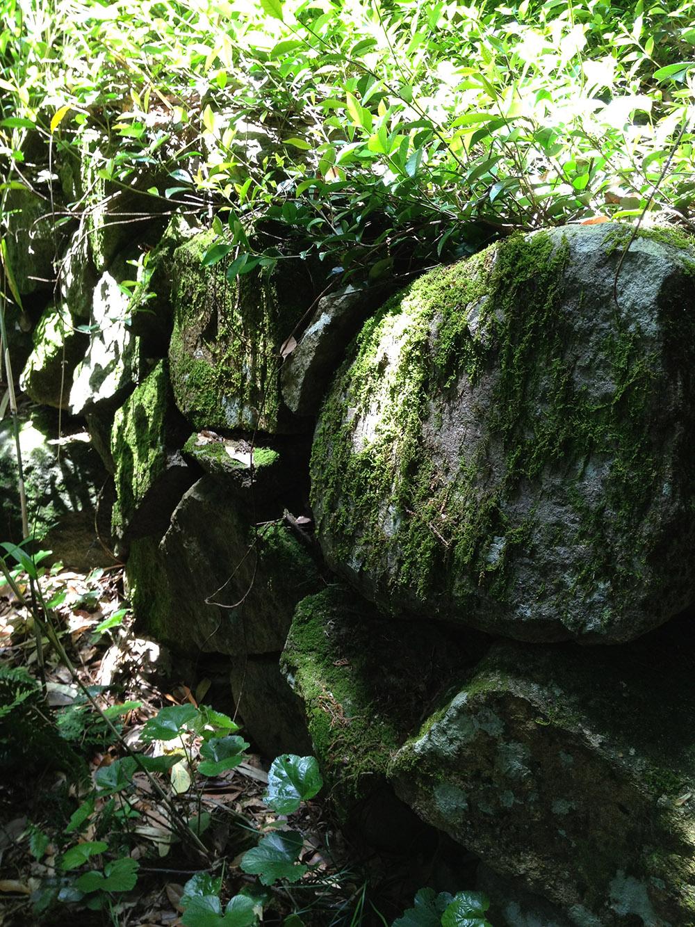 観音寺15